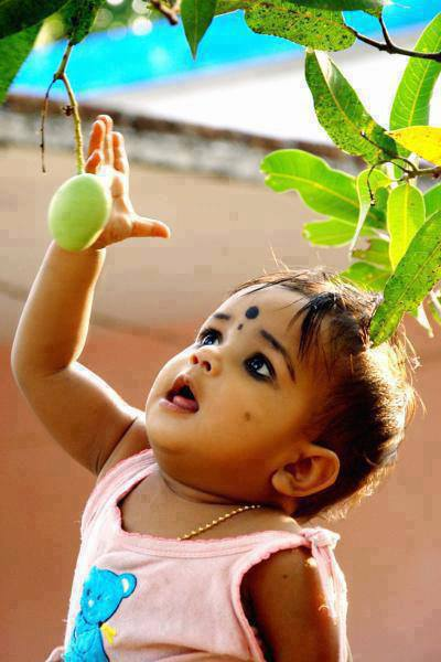 baby-mango